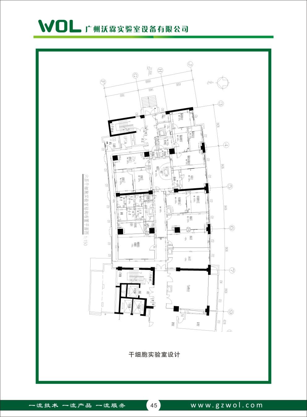 干细胞实验室设计_广州沃霖实验室设备有限公司实验